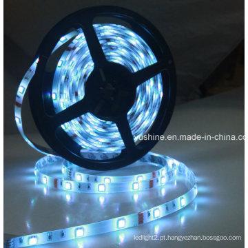 Fita LED 24V 5050SMD 60LEDs