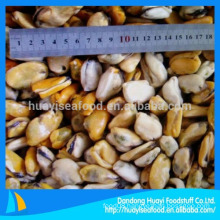 fresh frozen cooked mussel without shell