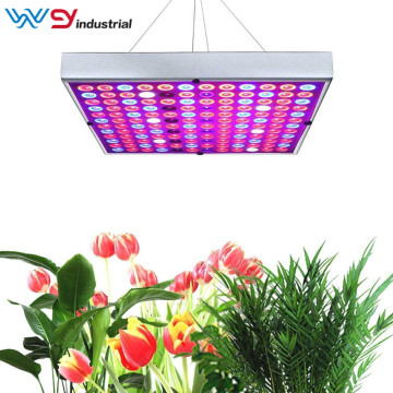 45W Panel Plant Light Full Spectrum