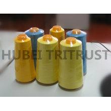 Polyester de fil de couture (40S / 2 5000 Y)