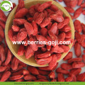 Super Food Migliorare la vista Ningxia Wolfberry