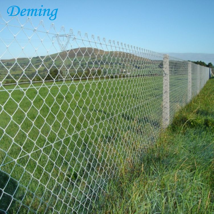 Factory Direct 50*50mm Decorative Chain Link Fence