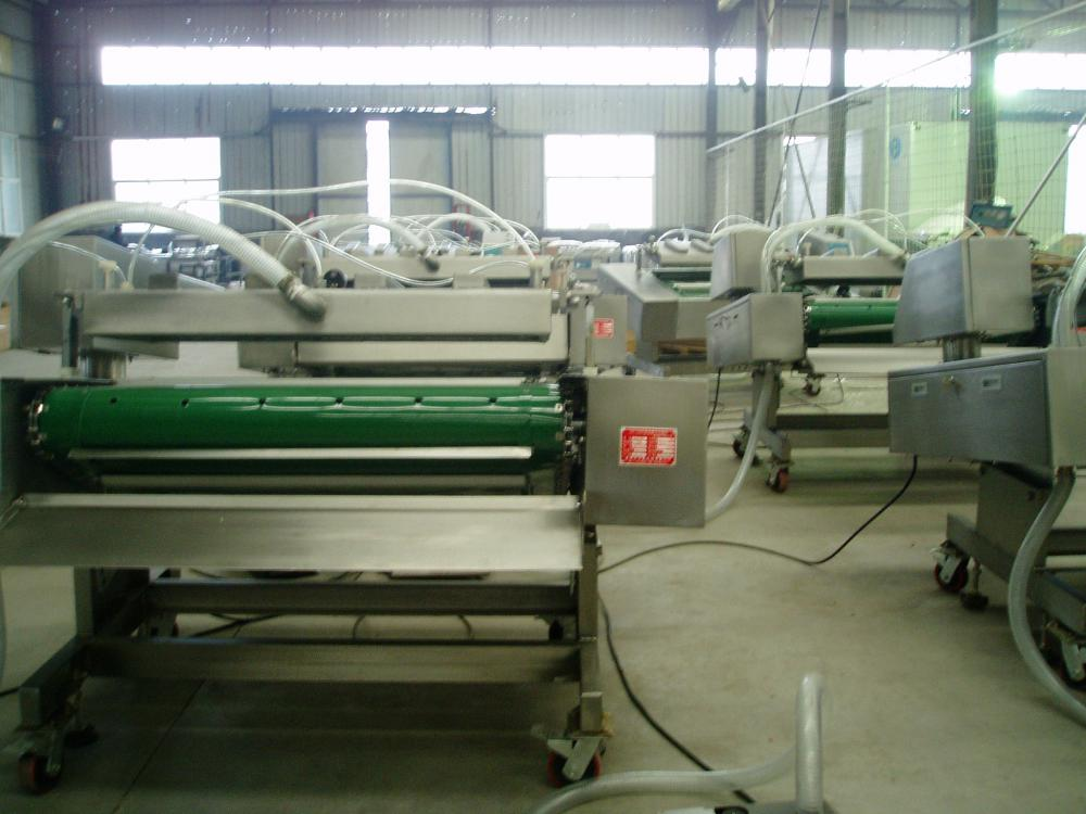 Caterpillar Motivation Vacuum Packing Machine