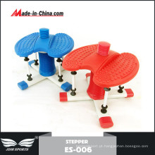 Alta Qualidade Indoor Body Sculpture Swing Stepper (ES-006)