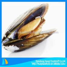 fresh frozen boiled mussel meat