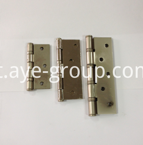 stainless hinges (1)