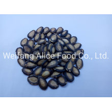Top Quality Wholesale Watermelon Seeds