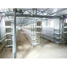 Formulaire automatique de matériel de volaille de cage de poulets de chair Fabricant professionnel