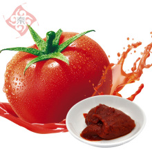 QINMA Tomatensuppe Paste 500g