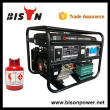BISON China Taizhou Factory Price GPL Générateurs de gaz Chine 4kw 4 kva Générateur de moteur à gaz Prix à vendre