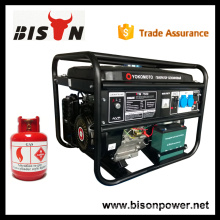 BISON China Taizhou Factory Price LPG Gas Generators China 4kw 4 kva Gas Engine Generator Price For Sale