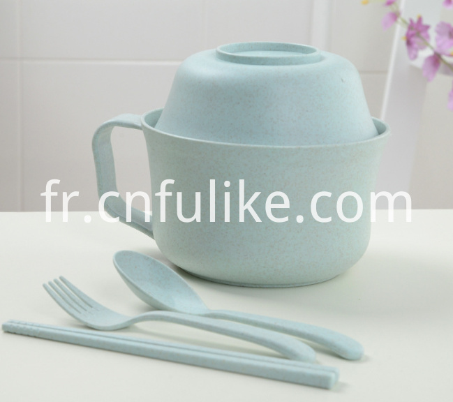 5 Pc Dinnerware Set