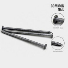Professional Price of Common Iron Nail From China