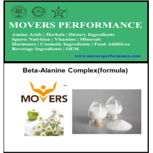 Bodybuilding OEM Beta-Alanine Complex (formule)