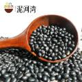 Tamanho: 570-580grains / 100g, feijão preto com melhor qualtiy