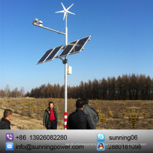 Sunning 300 Watt Inländische Windkraftanlagen Generator