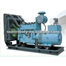 Natural Gas Generation Set with Woodward Actuator
