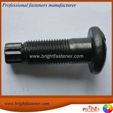 High Strength Torsional Shear Bolts(TC Bolts)