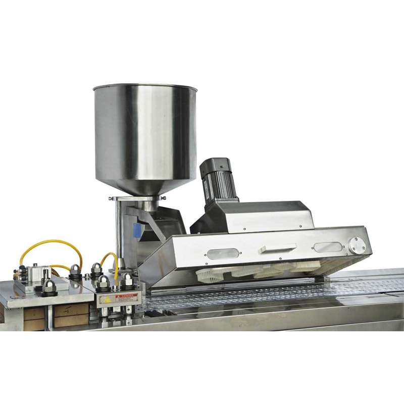 Auto feeder of DPP-250 blister packing machine