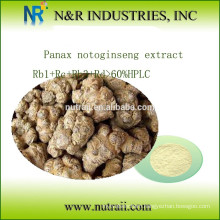panax notoginseng Extract Rb1+Rc+Rb3+Rd>60%HPLC
