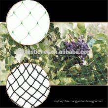 HDPE and Nylon Anti Pet Bird Net with high performance