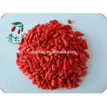 Bio-Goji-Beeren Großhandel von Fabrik, Goji-Beere, getrocknete Goji, konventionelle Goji-Beere, rote Goji-Beere