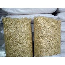 Novas sementes de amendoim