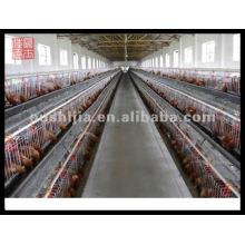 Plastic chicken cage