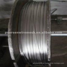 Hot Dipped galvanizado fio oval