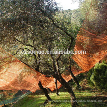 Los mejores productos de la mejor calidad mosquiteras impregnadas de verde oliva