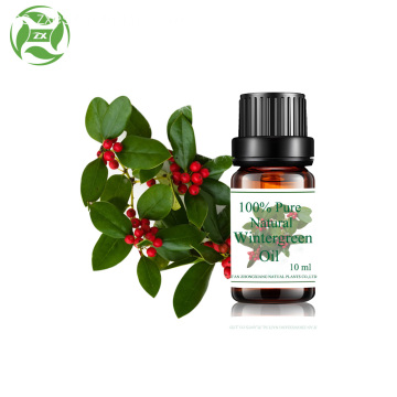 Venta al por mayor de aromaterapia puro natural wintergreen oil