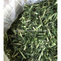 Rabbit Foods Pet Foods Barley Grass for Animal