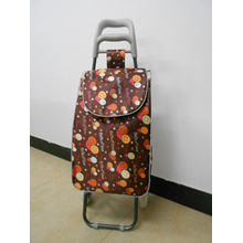 Factory outlet characteristic luggage carrier