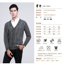 Yak Wool/Cashmere V Neck Pullover Long Sleeve Sweater/Clothing /Garment/Knitwear