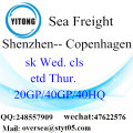 Fret de mer de port de Shenzhen expédition à Copenhague