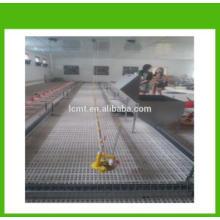 MT broiler chicken poultry floor feeding