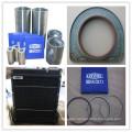 Oil Filter, Fuel Filter of Lovol Engine