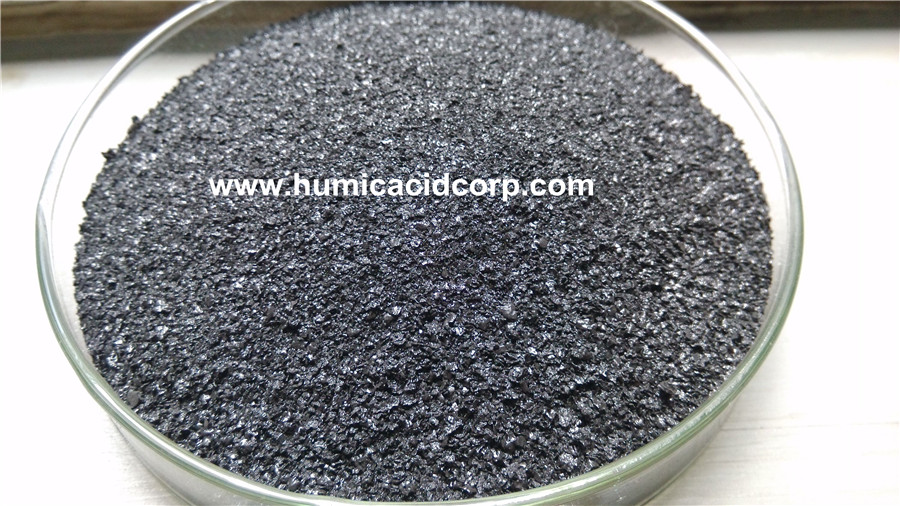 high quality leonardite sodium flake for animal