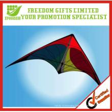 Promotional OEM Large Kites for Sale
