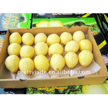 China exportación de peras frescas