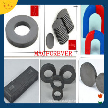 High Performance Various Shapes Y30 Ferrite Magnet for Motor