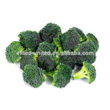 Nouveau brocoli surgelé