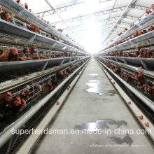 Fazenda automática de gaiola de frango para camadas com SGS Cetification
