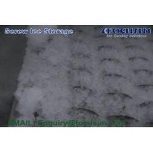Focusun high quality 20 feet Containerized Screw Ice Storage Cold Room System