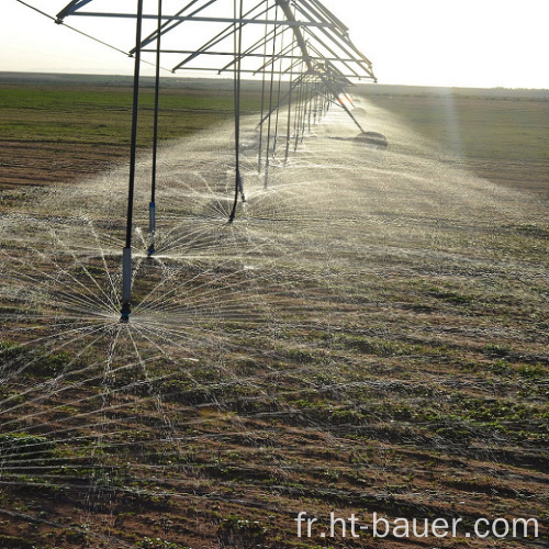 Irrigation à pivot central par arrosage mobile Nelson