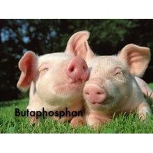 Butaphosphan Veterinary API Feed Grade Butaphosphan