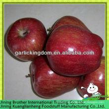 China deliciosa manzana roja exportador
