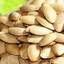 Chinese non organic pumpkin seeds