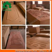 Ep Taek Veneer HDF Moulded Door Skin