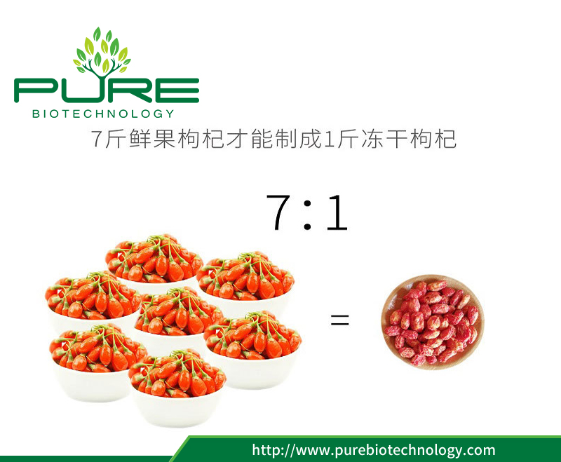 Freeze-drying Red Goji Berry